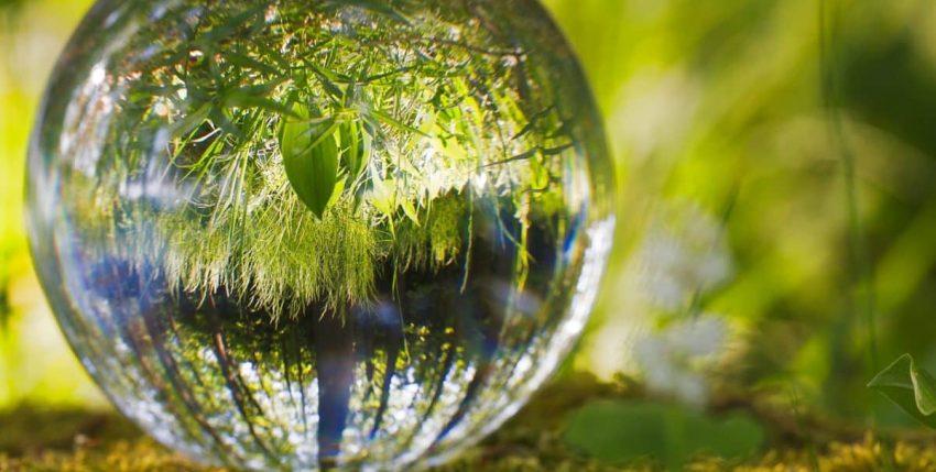 Campañas medioambientales que han logrado un gran impacto a nivel mundial